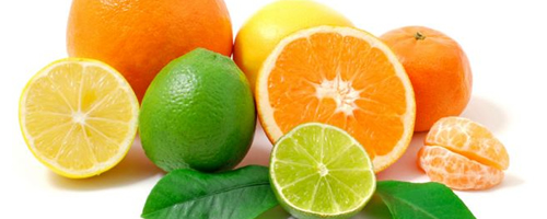 banner-citricos